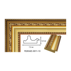 Plastic Frame Art.No: 70-01-01 at 3,45 USD | Baghet.md